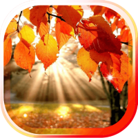 Autumn Leaves LWP