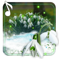 Snowdrops Flowers Live wallpaper