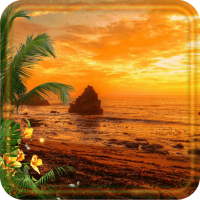 Tropical Sunset live wallpaper