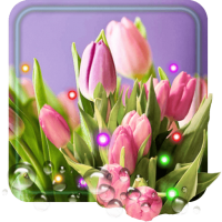 Tulips Spring live wallpaper