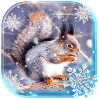 Winter Squirrel Forest live wallpaper