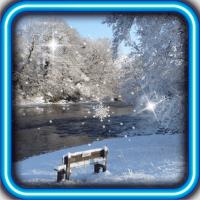 Winter Bench live wallpaper
