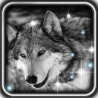 Wolves Voices LWP