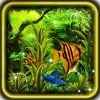 Aquarium Best 3D