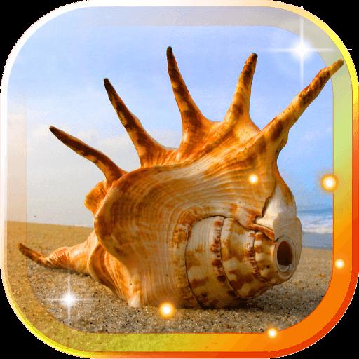 Sea Shells Beach LWP