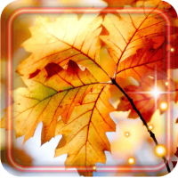 Autumn Leaf 3D livewallpaper