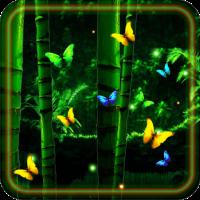 Butterflies Jungles