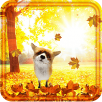 Autumn Forest Fox LWP