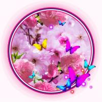 Spring Magic LWP