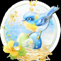 Spring Birdhouse LWP