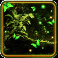 Jungles Night Fireflies