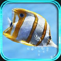 Fish Tropical live wallpaper