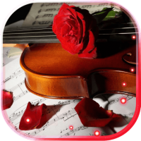 Rose n Violin