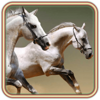Horses Voices