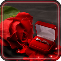 Lovely Gifts HD