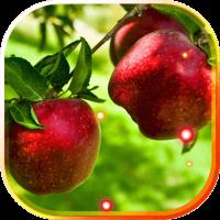 Apples live wallpaper