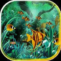 Aquarium Best 2