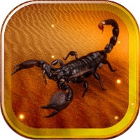 Scorpions Desert