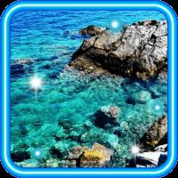Sea Best 2016 live wallpaper