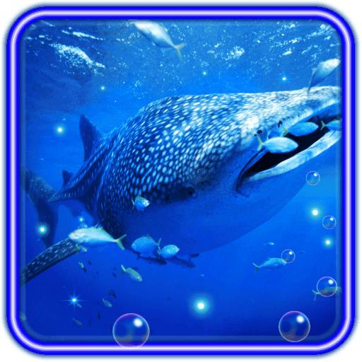 Shark Tiger HD