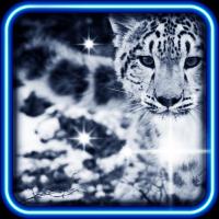 Snow Leopard Bars