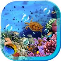 Sea Underwater Free