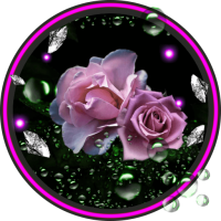 Roses Diamond Dew