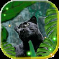 Pantera Black Leopard