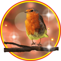 Birdies Cute LWP