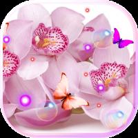 Orchide Pink live wallpaper