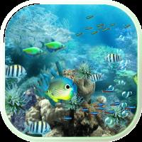 Underwater Ocean