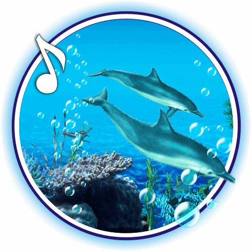 Dolphins Sounds live wallpaper