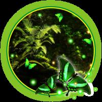 Jungles Night Fireflies live wallpaper