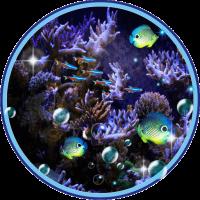 Neon Aquarium Fish live wallpaper