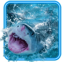 Sharks Live Wallpaper
