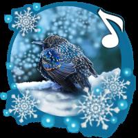 Winter Birds Live Wallpaper