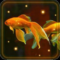 Aquarium Gold Fishes live wallpaper