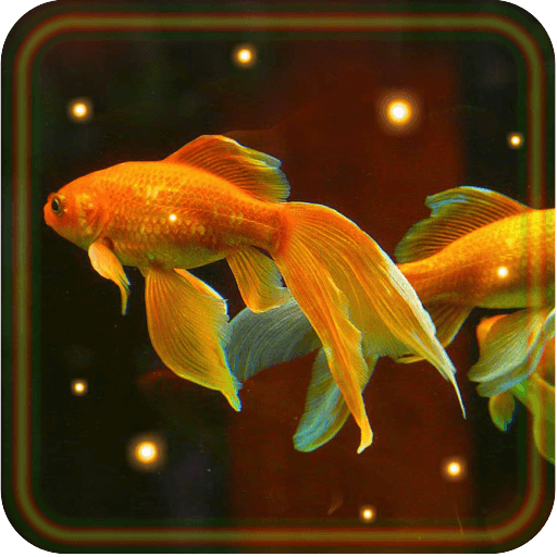 Aquarium Gold Fishes live wallpaper