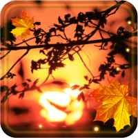 Autumn Sunset live wallpaper