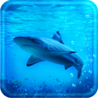 Blue Shark live wallpaper